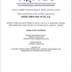 Egesil TS Certificate Ap-2