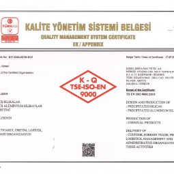 ISO En 9001 Appendix