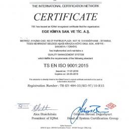 TSE En ISO 9001 2015